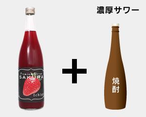 ��������sakura���������� ����